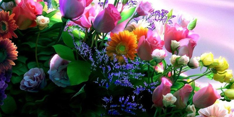 comprar flores baratas en línea